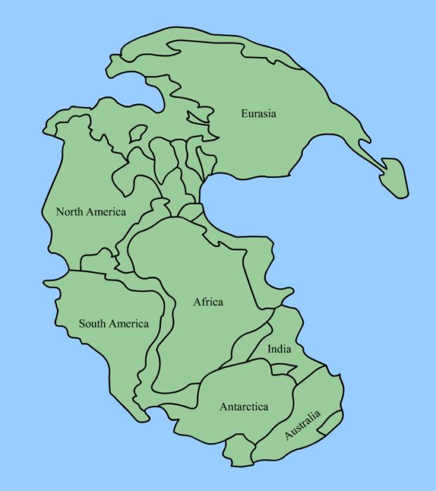 パンゲア大陸
