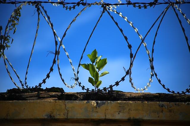 刑務所の休日と共同室の生活について