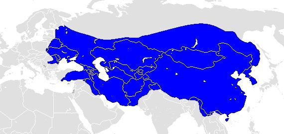 昔強かった国を調べてみた【モンゴル,スペイン,オーストリア,アルゼンチン】