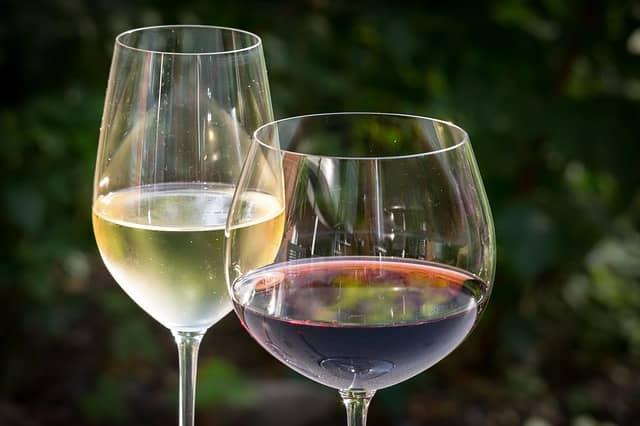 ワインの歴史について調べてみた【最古は紀元前6000年前】