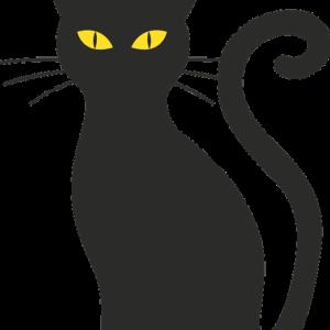 猫の歴史・ルーツについて調べてみた