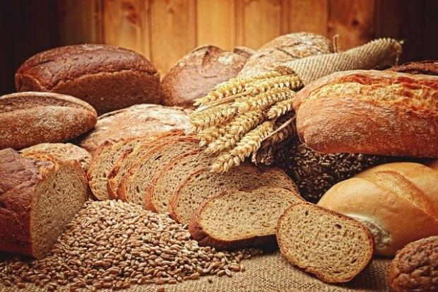 「パンの歴史」について調べてみた
