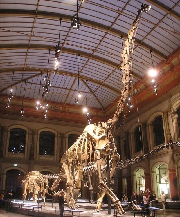 かつてブラキオサウルスだった恐竜達 「ジラファティタン」