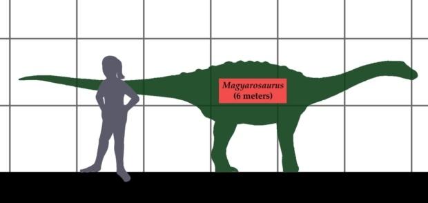 エウロパサウルスの飼育方法