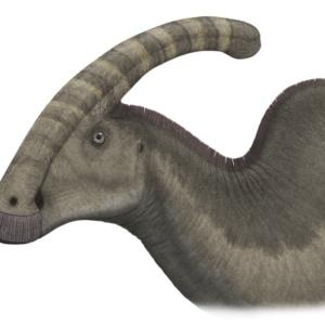 コリトサウルスの貴重な発見【ミイラ化石からスターダムへ】