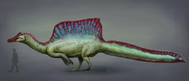 スピノサウルスの帆の謎